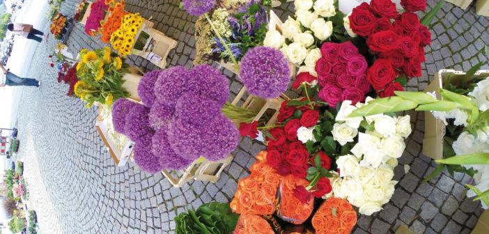 Blumenmarkt Bludenz